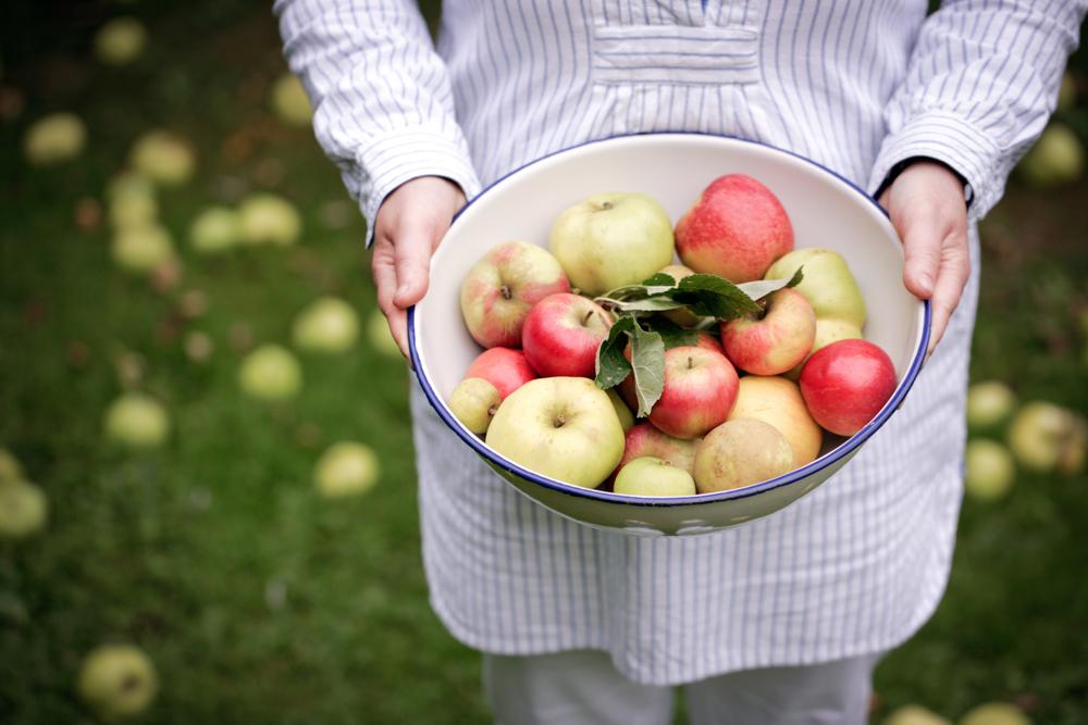 Silvana de Soissons, The Foodie Bugle, Artisan Food, Bath England|Fabulous Fabsters