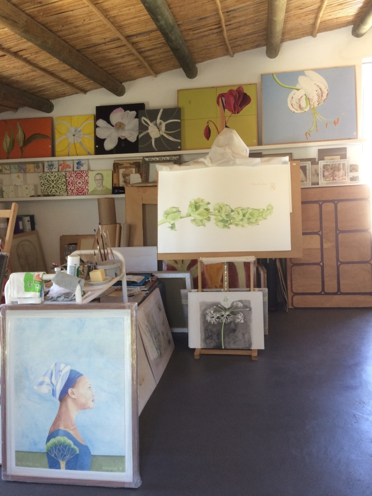 Art and the Environment: Sally Arnold — Fabulous Fabsters. Artist's Studio.