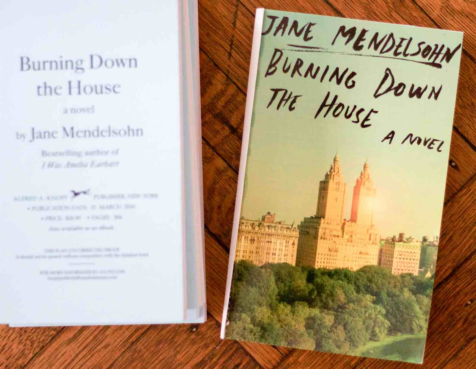 Novelist, Writer, Jane Mendelsohn at home, Advance Copy of Burning Down the House | Fabulous Fabsters