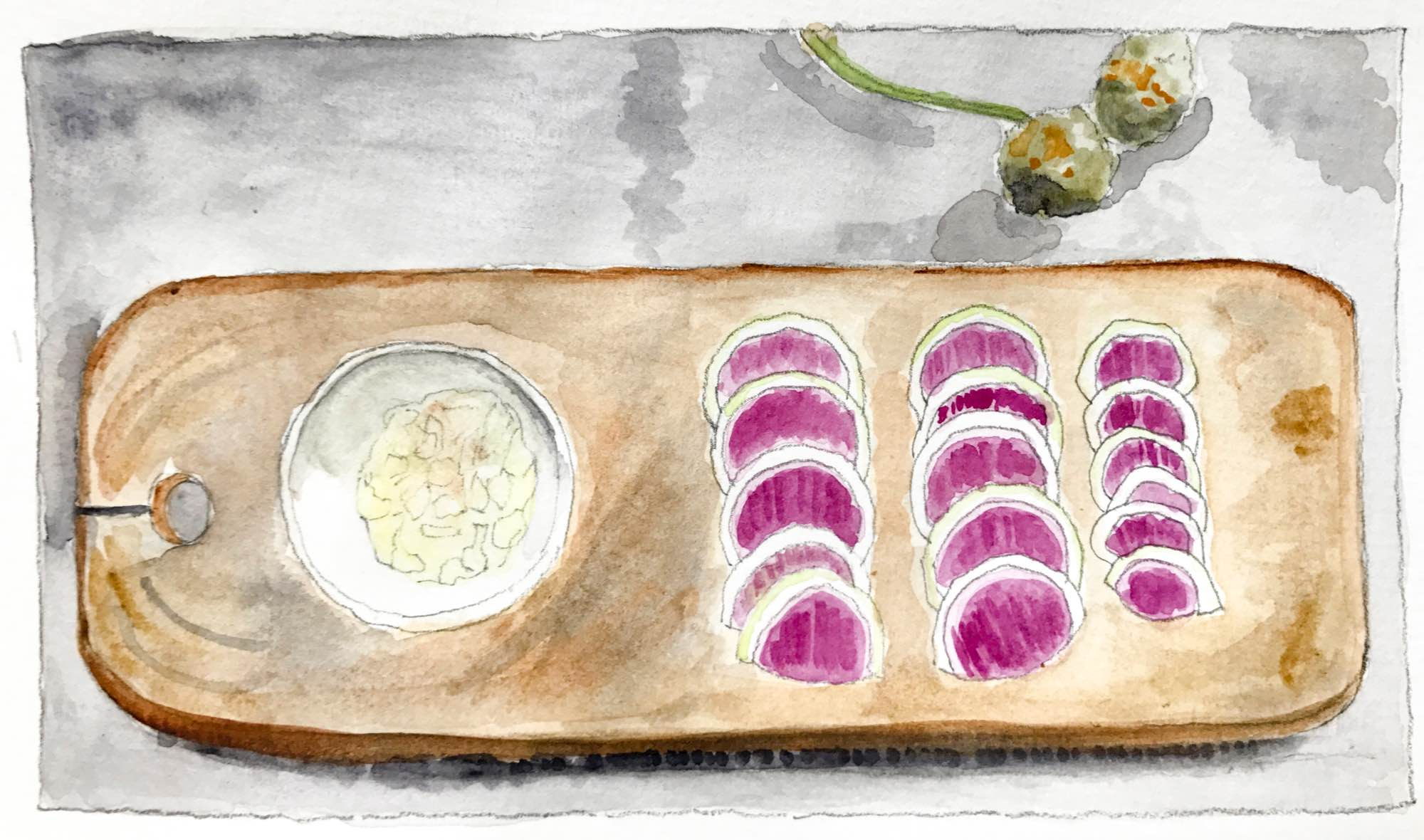 a watercolour of rainbow radishes by Christine Chang Hanway