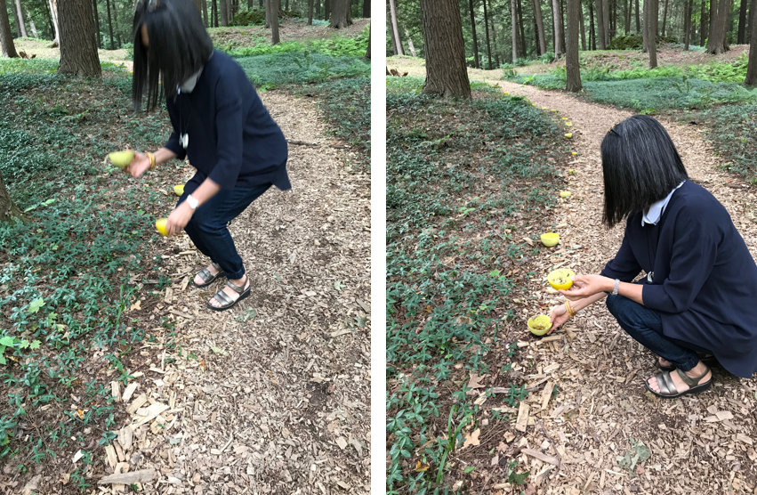 Japanese woman in navy sweater and trousers positions yellow bowls on a woody path, Setsuko Sato Winchester